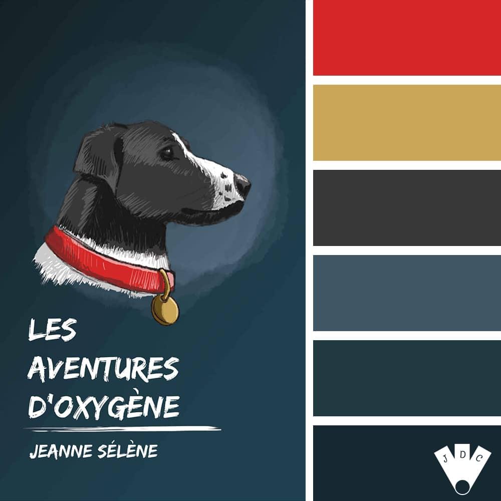 Les aventures d'Oxygène / Jeanne Sélène