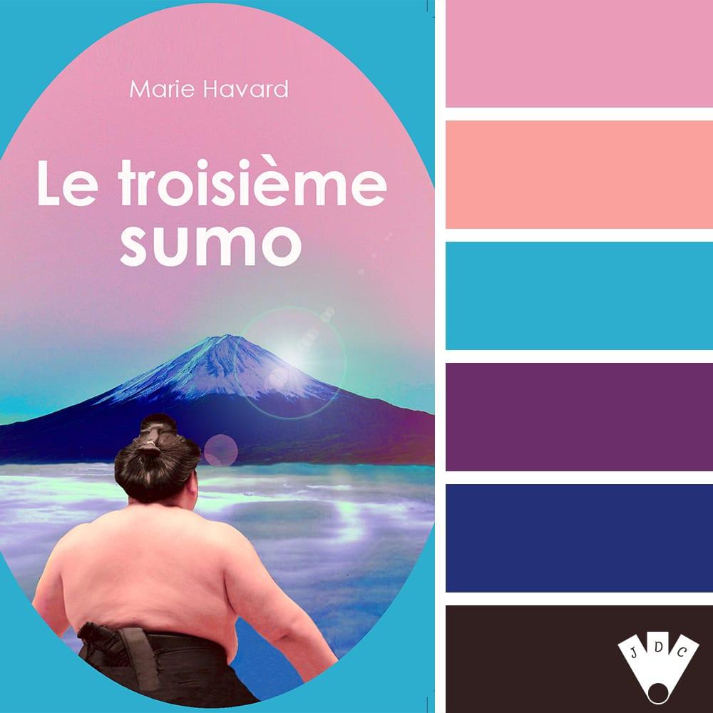 """Color palette du livre """"Le troisième sumo"""" de l'auteure auto-édité Marie Havard"""