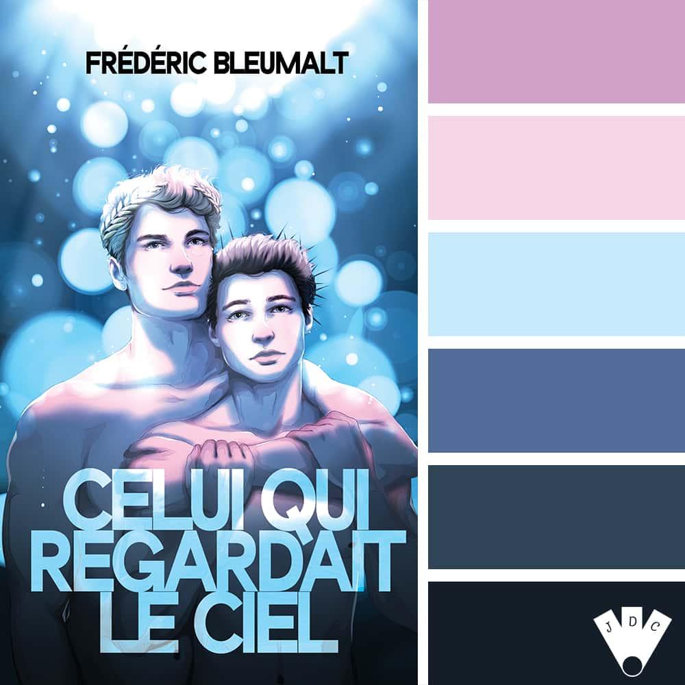 """Color palette du livre """"Celui qui regardait le ciel"""" de l'auteur Frédéric Bleumalt"""