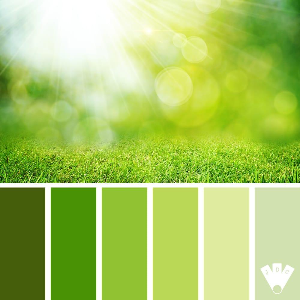 Color palette dans les tons vert avec coin de verdure éclairé par un rayon de soleil