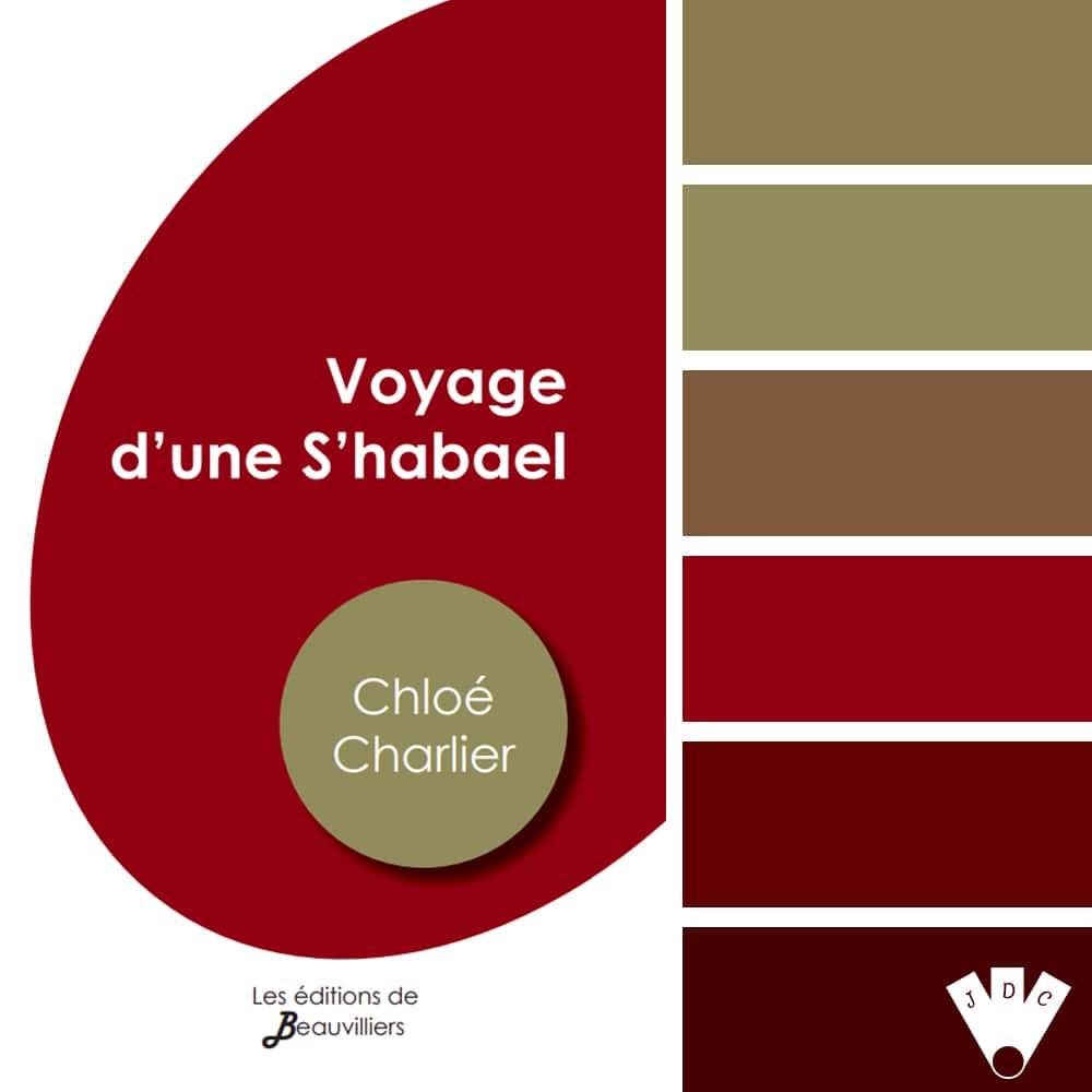 """Color palette du livre """"Le voyage d'une s'habael"""" de l'auteure Chloé Charlier"""