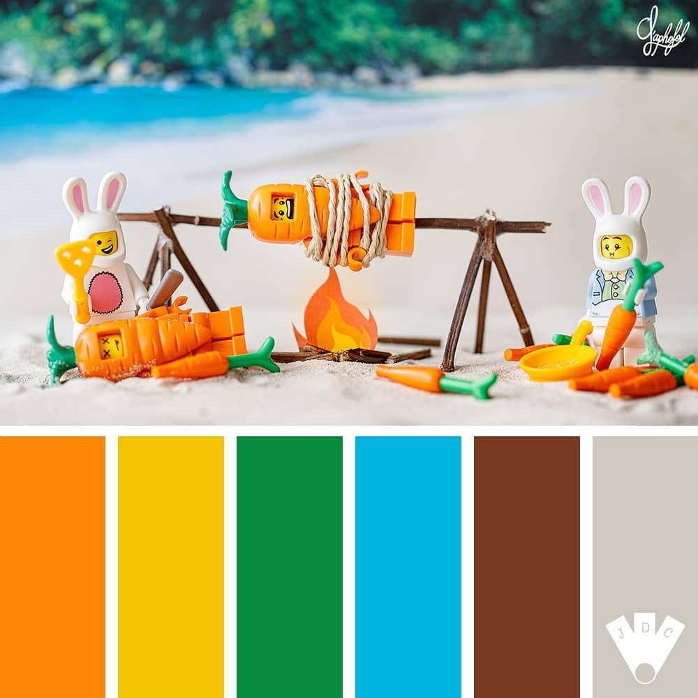 Color palette d'une photo du photographe Aphofol pour l'éxpression de la semaine