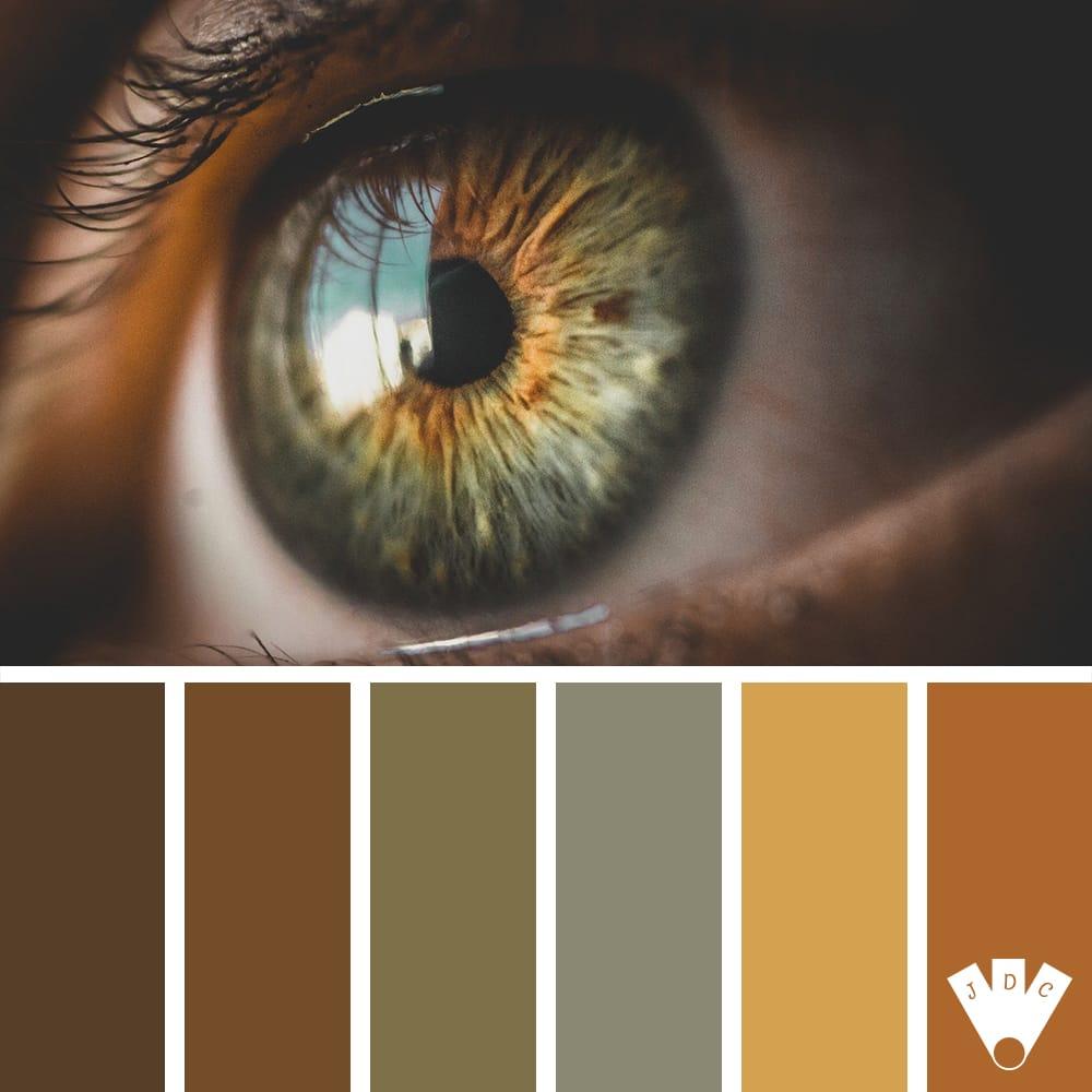 Color palette sur journal des couleurs à partir d'une photographie d'un œil humain.