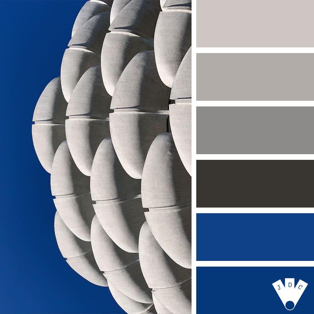 Color palette à partir d'une photo des choux de Créteil de annyelleparis