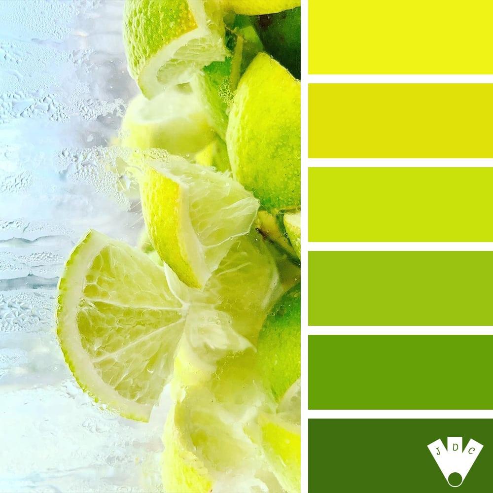 Color palette d'une photo de citron de la photographe Annyelle Paris