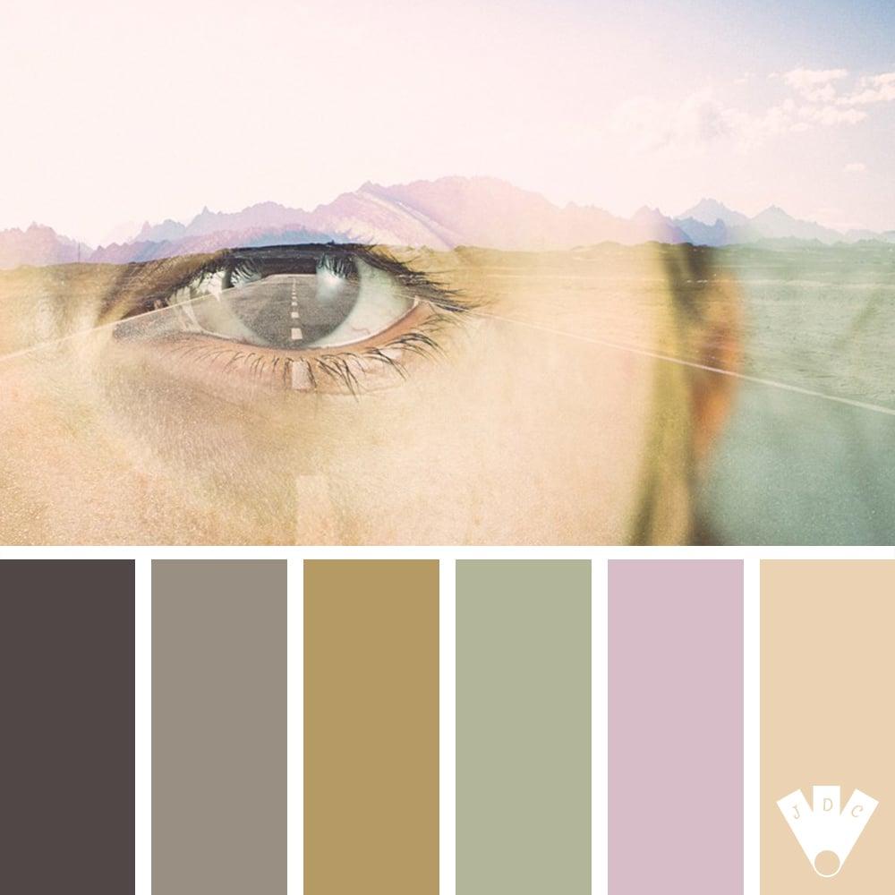Color palette à partir d'une photo du photographe L'Art Hashe