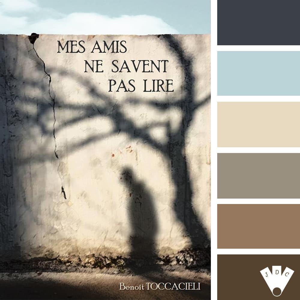 """Color palette du livre """"Mes amis ne savent pas lire"""" de l'auteur Benoit Toccacieli"""