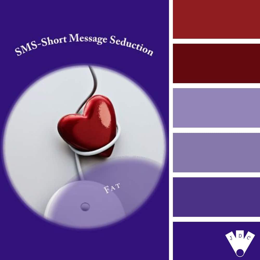 """Color palette du livre """"Sms short message séduction"""" de l'auteure Fat"""