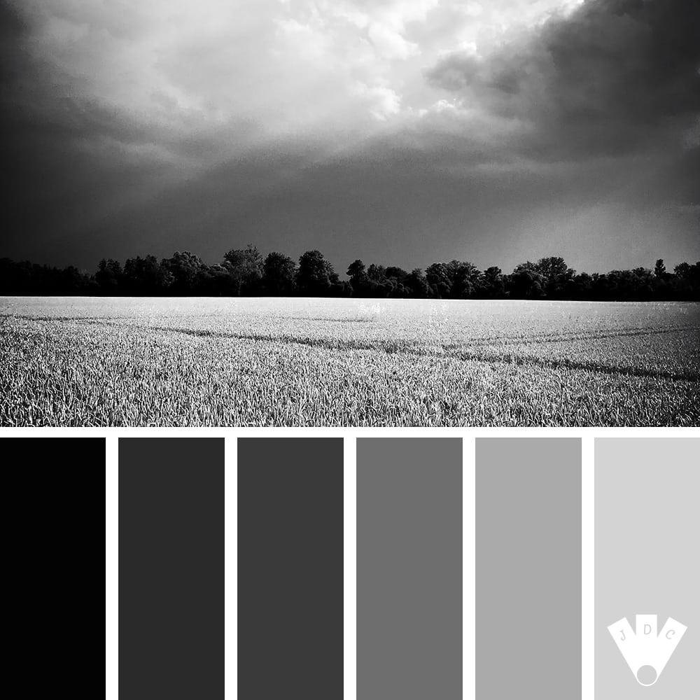 Color palette à partir d'une photo du photographe Le noir lapin