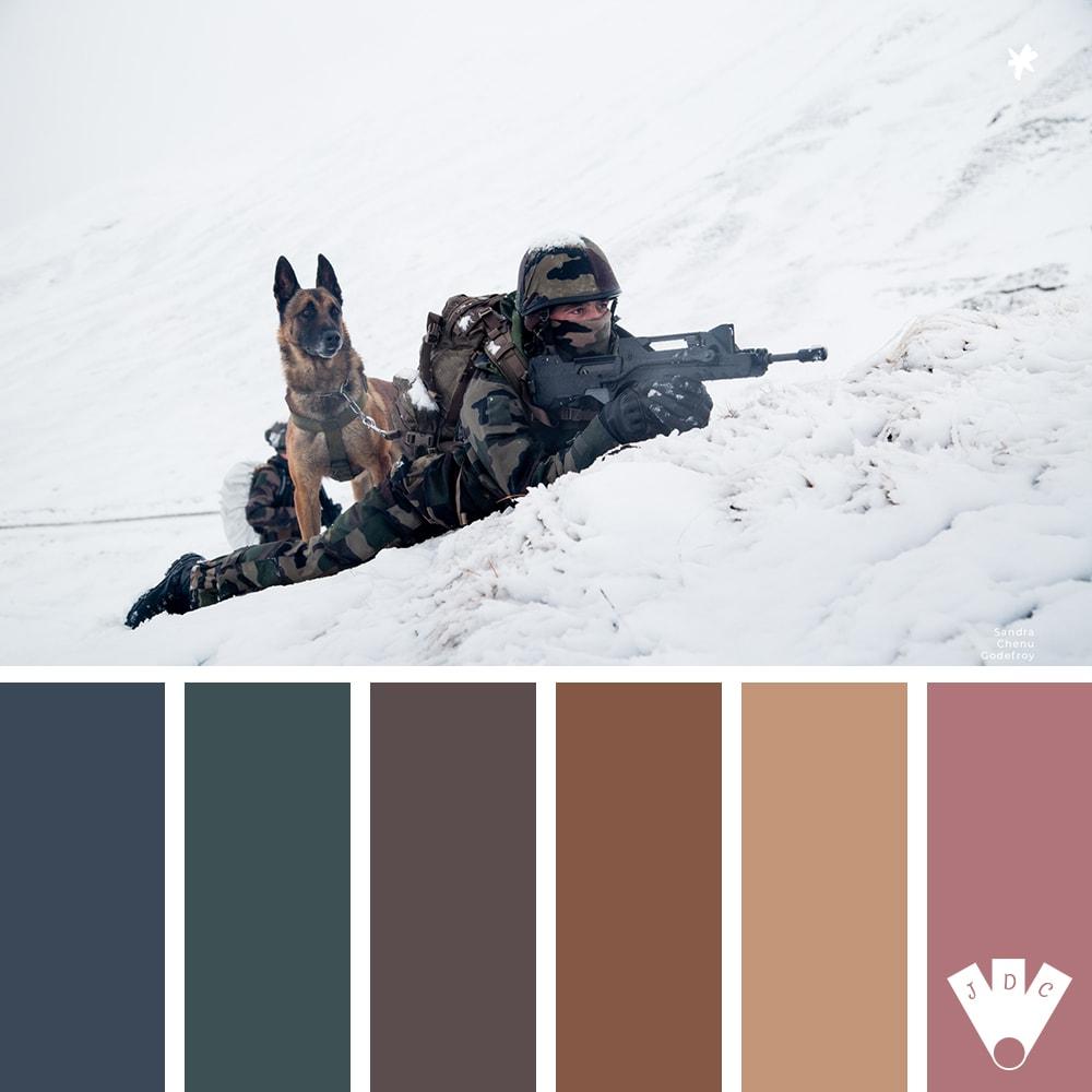 """Color palette à partir d'une photo de """"l'équipe cynophile du 132e BCAT"""" de la photographe Sandra Chenu Godefroy"""