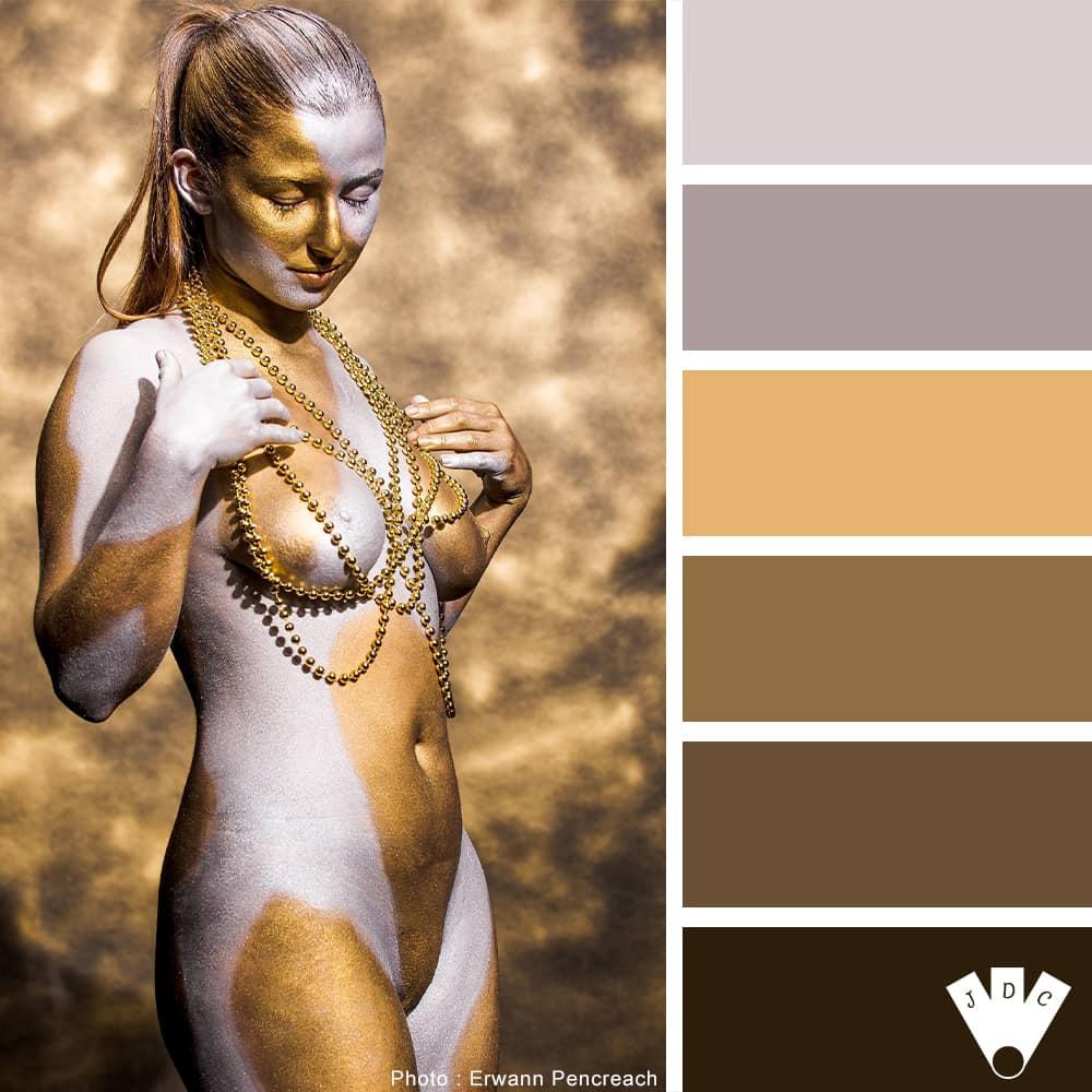 """Color palette à partir d'une photo du projet """"or et argent"""" du photographe Erwann Pencreach"""