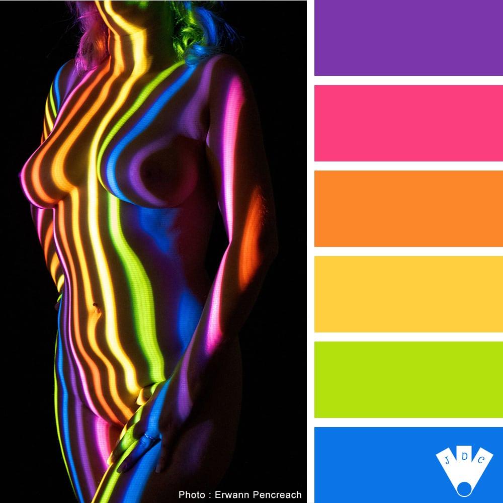 """Color palette à partir d'une photo du projet """"Projection"""" du photographe Erwann Pencreach"""