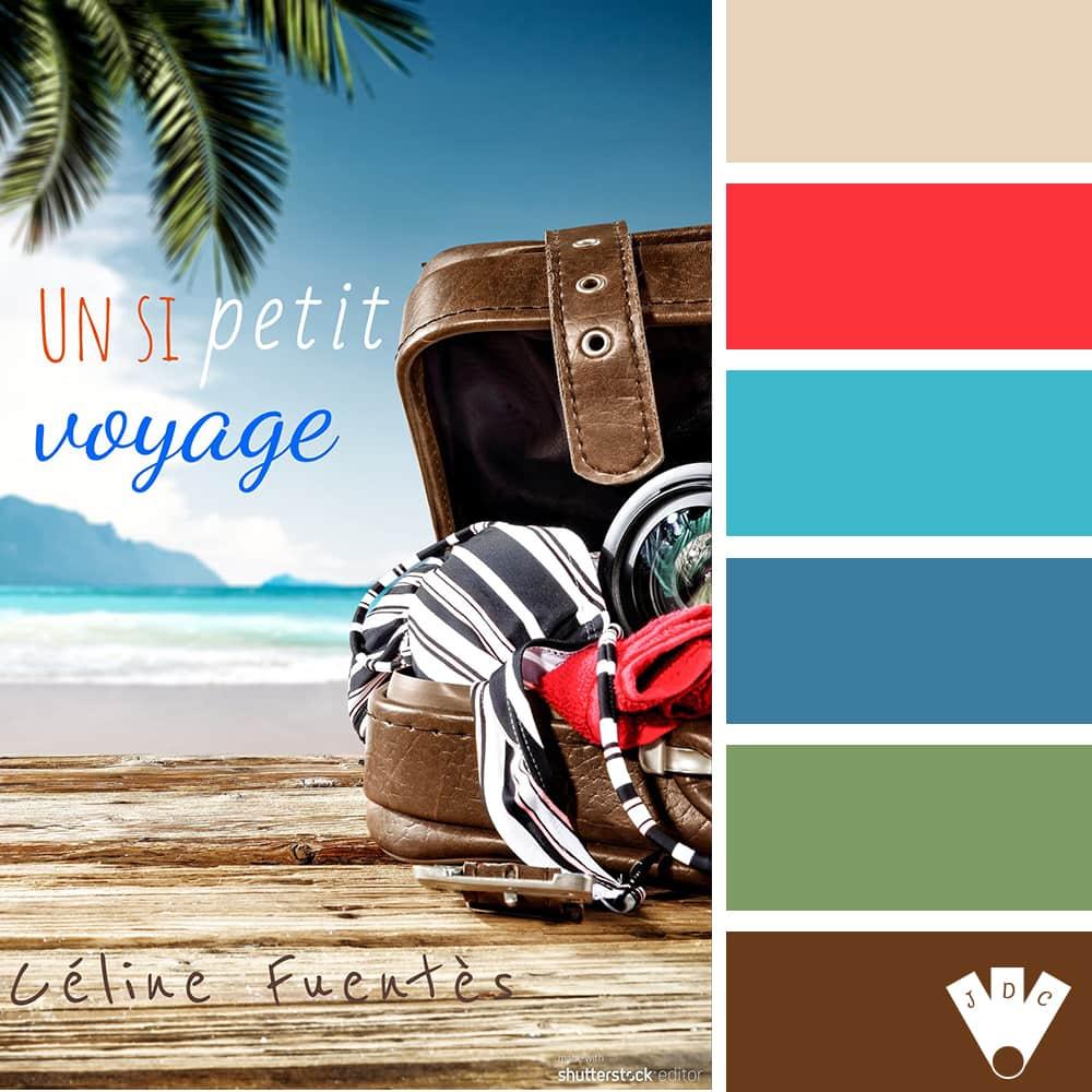 """Color palette à partir de la couverture du livre """" Un si petit voyage"""" de l'auteure Céline Fuentès."""